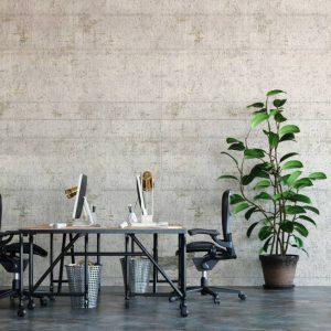 6 objets déco incontournables à avoir dans son bureau